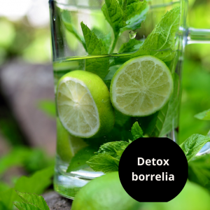 Detoxprotokoll Borrelia