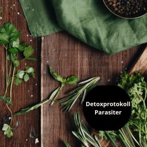 Detoxprotokoll Parasiter